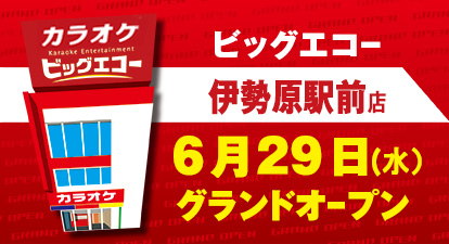 カラオケ ビッグエコー伊勢原駅前店