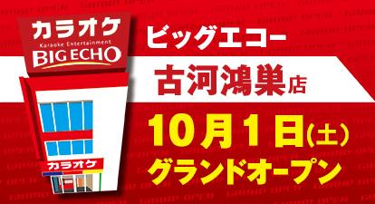 カラオケ ビッグエコー古河鴻巣店