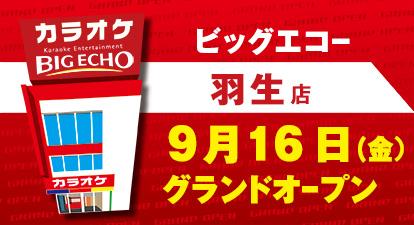 カラオケ ビッグエコー羽生店
