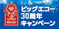 「ビッグエコー×a-nation」キャンペーン