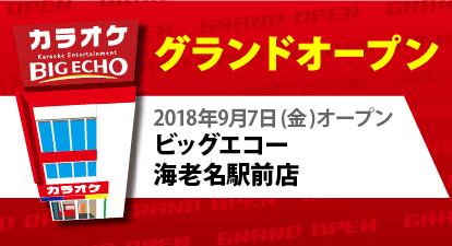 カラオケ ビッグエコー 海老名駅前店