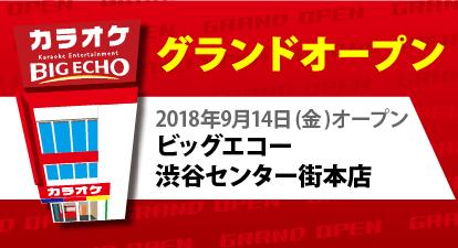 カラオケ ビッグエコー渋谷センター街本店
