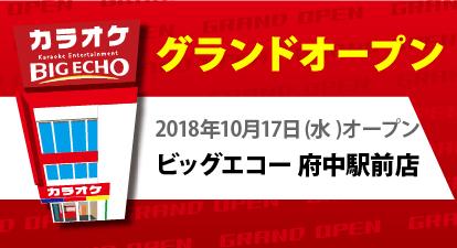 カラオケ ビッグエコー府中駅前店