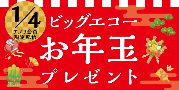 ビッグエコーお年玉プレゼント2019