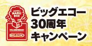 「ビッグエコー×米津玄師」キャンペーン