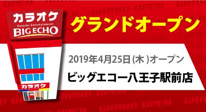 カラオケ ビッグエコー八王子駅前店