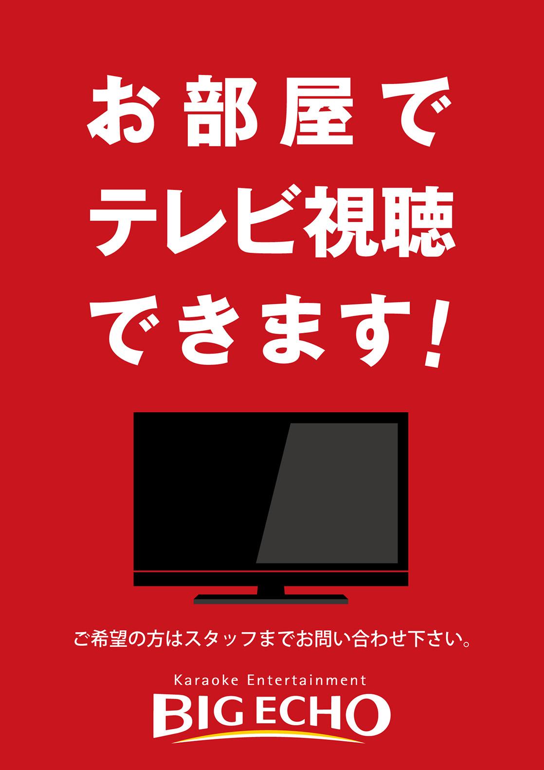 カラオケ ビッグエコーはお部屋でテレビ視聴できます!